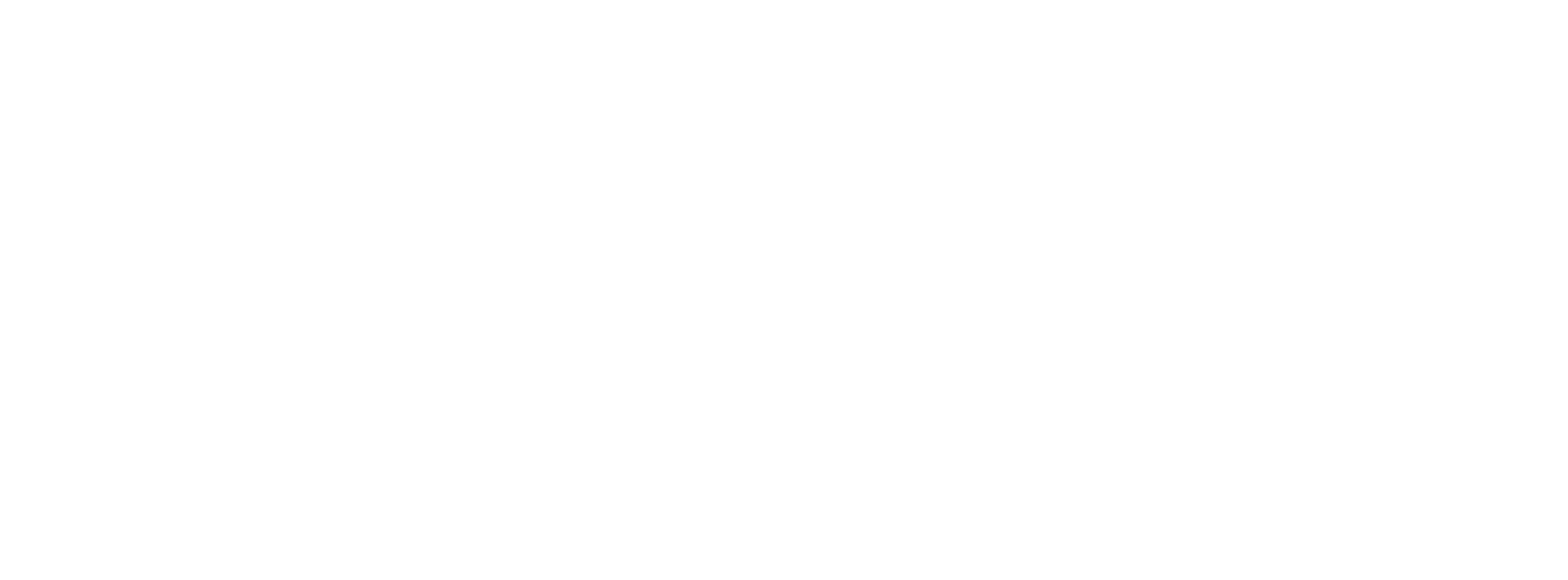 CareersWiki White Logo
